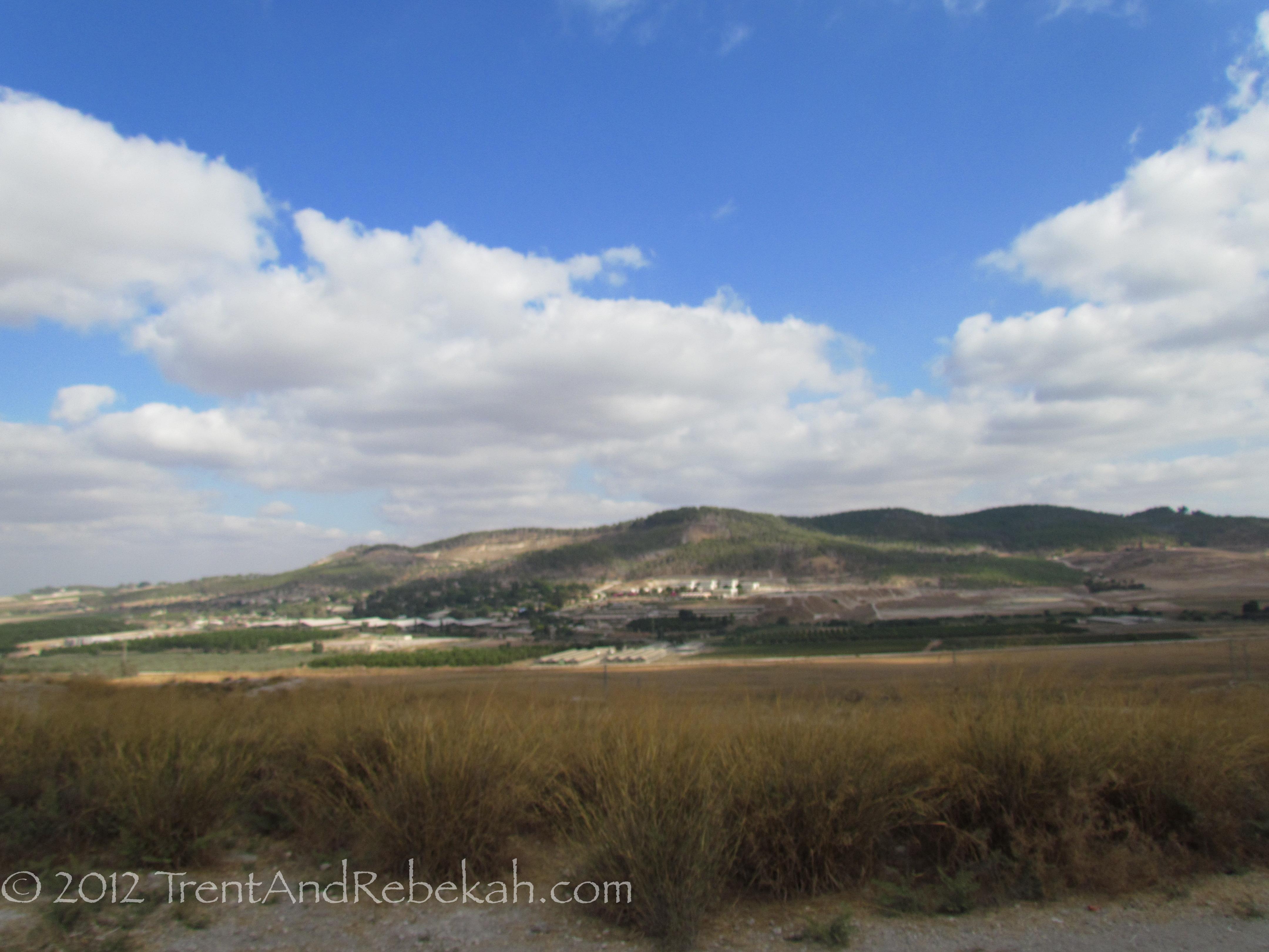 At Beth Shemesh Ark: Beth-Shemesh Samson David