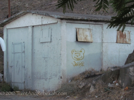 Creepy Teddy Bear Stare Graffiti