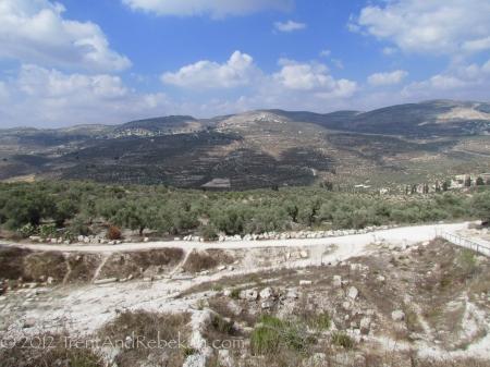 Samaria Destruction Amos Prophesy